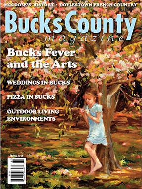 Bucks County Fall 2014 cover