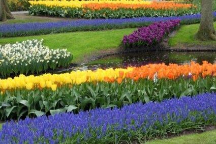 Bucks Garden