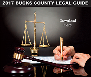 2017 Legal Guide