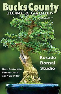 Home & Garden 2017 Cover