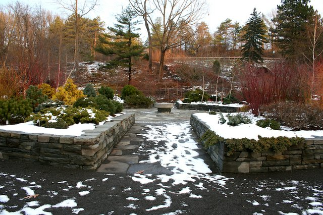 Bucks Winter 2017 Garden