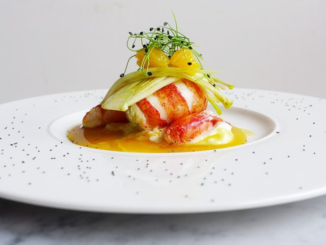 lobster+with+a+citrus+sauce+and+scallion+sprouts.jpg
