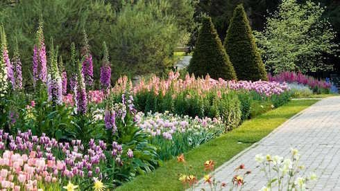 Summer Garden 2019