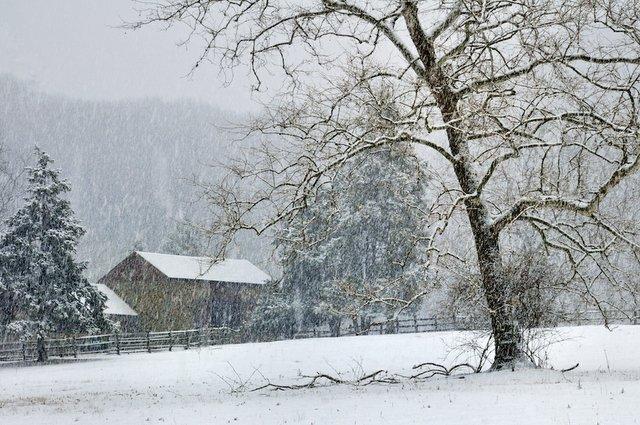 SnowyMorningThompsonNeelyFarm.jpg