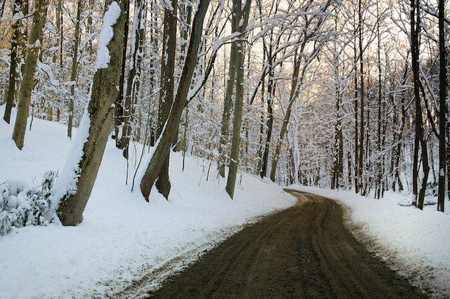 WinterSunsetAlongCuttalossaRoad-RuthCTaylor.jpg