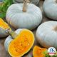 Pumpkin-Blue-Prince-Logo-535x535.png