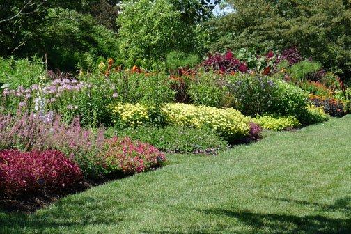 Avante Garden