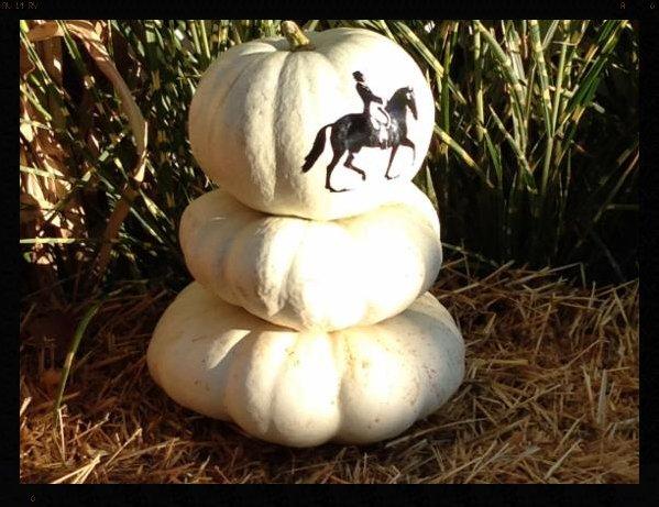 white pumpkins.png
