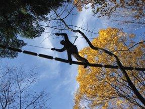 Pocono Tree Climbing