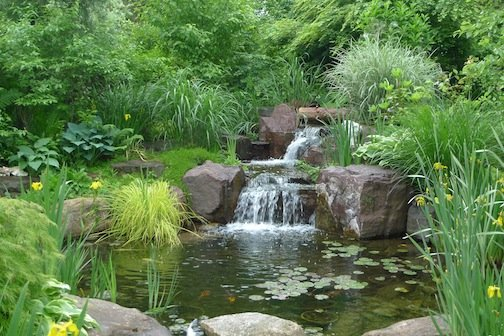 Avant Garden summer 14