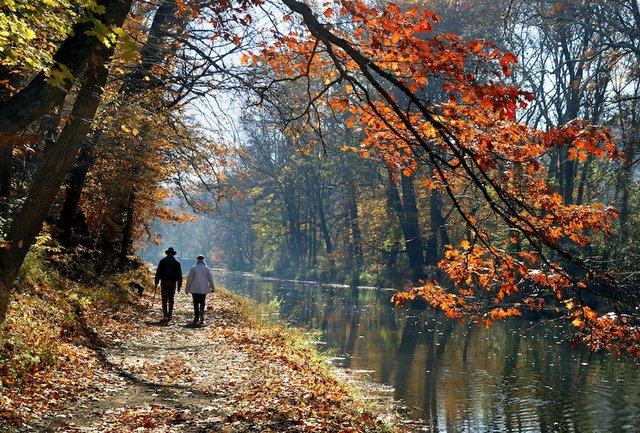 Nature fall 14