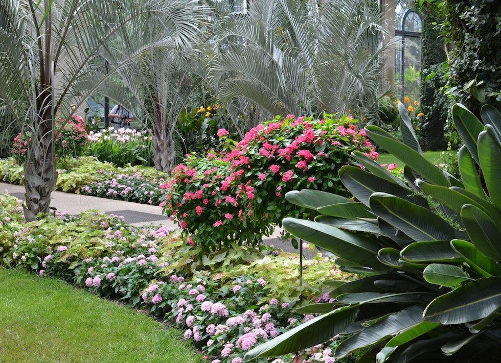 Garden w 14
